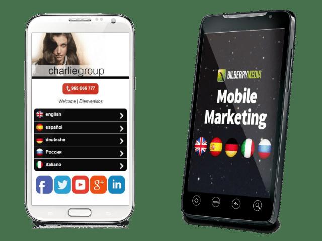 saaset-multi-mobile2